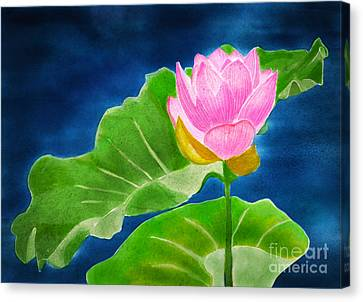 Pink Lotus  Canvas Print by Joan A Hamilton
