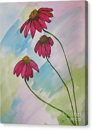 Pink Canvas Print by Marcia Weller-Wenbert
