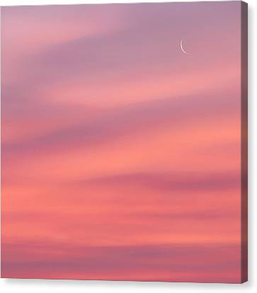 Pink Moon Square Canvas Print by Bill Wakeley