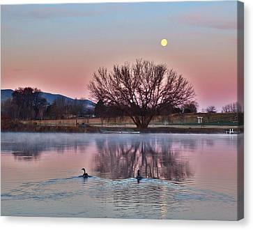 Canvas Print featuring the photograph Pink Morning by Lynn Hopwood