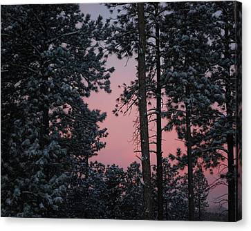 Pink Mountain Morning Canvas Print