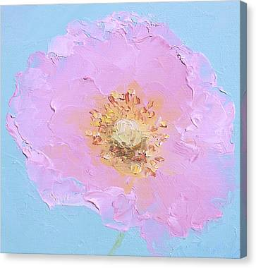 Pink Oriental Poppy Canvas Print by Jan Matson