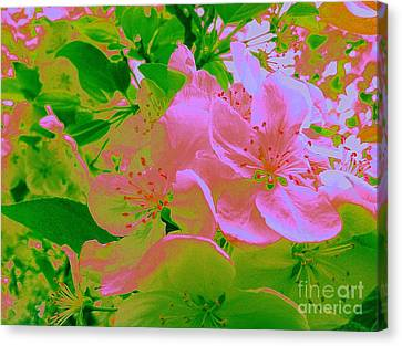 Pink Passion Crabapple Canvas Print by Shelia Kempf