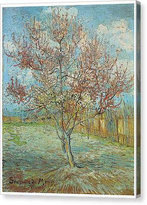 Pink Peach Tree In Blossom Canvas Print by Vincent Van Gogh