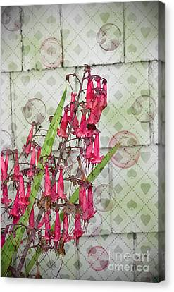 Pink Penstemon Bubbles Digital Art Prints Canvas Print