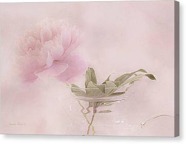 Pink Peony Blossom In Clear Glass Tea Pot Canvas Print
