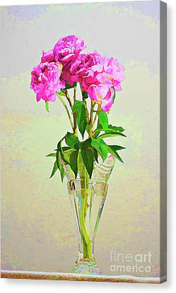 Pink Peony Flowers Canvas Print by Linda Matlow