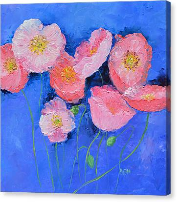 Pink Poppies On Blue  Canvas Print