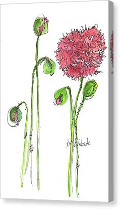Pink Poppy Canvas Print by Kathleen McElwaine
