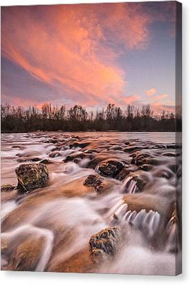 Pink Rapids Canvas Print by Davorin Mance