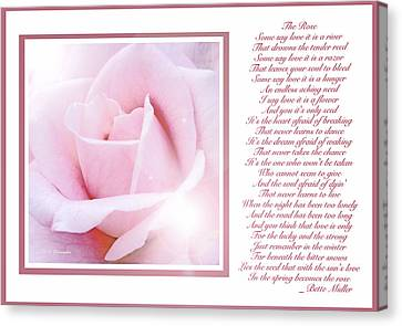 Pink Rose And Song Lyrics Canvas Print