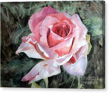 Pink Rose Greg Canvas Print