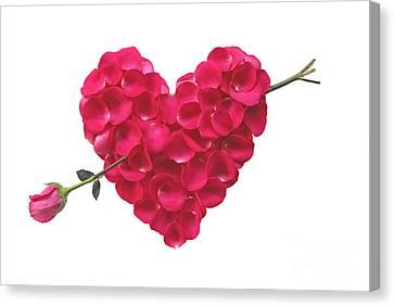 Pink Rose Heart Valentine Canvas Print
