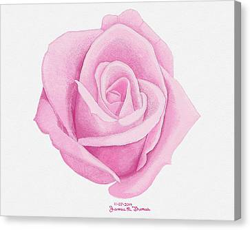 Pink Rose Canvas Print by James M Thomas
