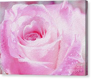 Pink Rose Canvas Print by Jon Neidert