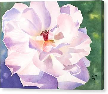 Pink Rose - Transparent Watercolor Canvas Print