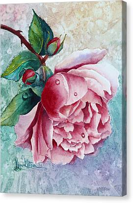 Pink Rose With Waterdrops Canvas Print by Karen Mattson