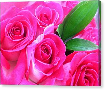 Canvas Print featuring the photograph Pink Roses by Alohi Fujimoto
