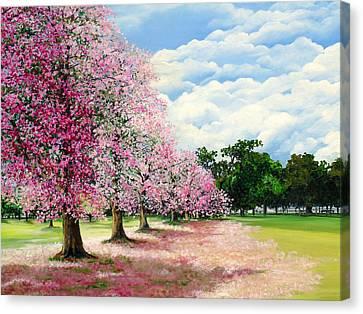 Pink Savannah Poui Canvas Print by Karin  Dawn Kelshall- Best