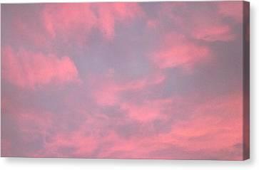 Pink Sky Canvas Print by John Wartman
