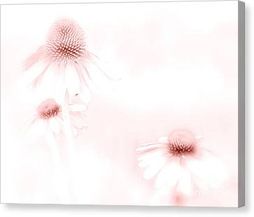 Pink Sonata  Canvas Print by Andrea Kollo
