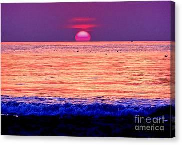 Pink Sun Canvas Print by Nina Ficur Feenan