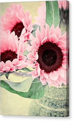 Pink Sunflowers Canvas Print by Angela Doelling AD DESIGN Photo and PhotoArt