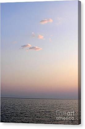 Pink Sunset Canvas Print by Zoran Berdjan