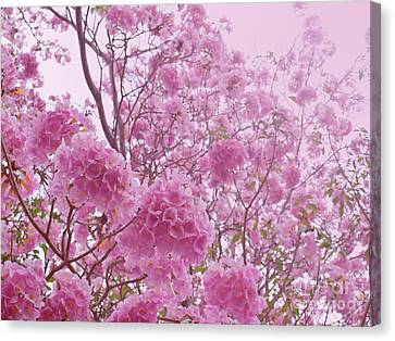 Pink Sweet Dream Feeling  Canvas Print by Sarun T