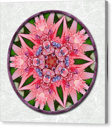 Pink Tropical Bromeliad Mandala On Green Tinted Rice Paper Canvas Print by Elaine Plesser