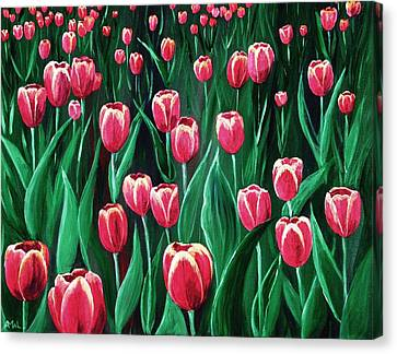 Pink Tulip Field Canvas Print