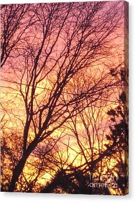 Pink Twilight Canvas Print