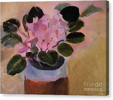 Pink Violets Canvas Print