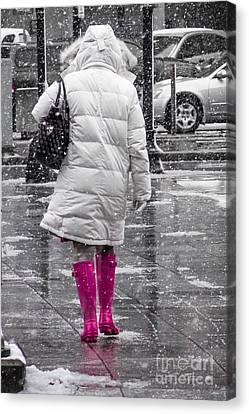 Pink Walk Canvas Print by Susan Cole Kelly Impressions