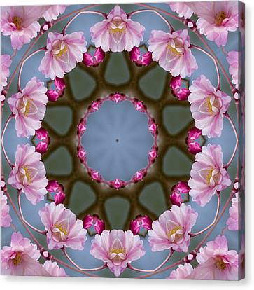 Pink Weeping Cherry Blossom Kaleidoscope Canvas Print by Kathy Clark
