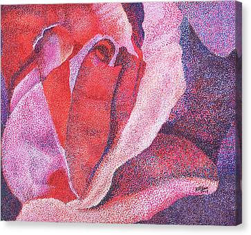 Pinkrose#5-2 Canvas Print by William Killen