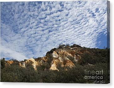Cliff Lee Canvas Print - Pinnacles Of Fraser Island by Linda Lees
