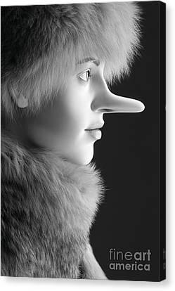 Pinocchios Daughter Canvas Print by Sophie Vigneault