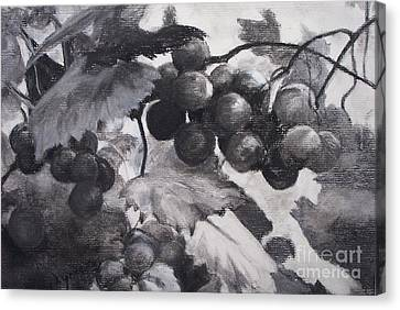 Pinot Noir Canvas Print by Mary Lynne Powers