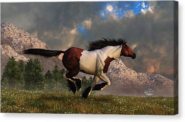 Pinto Mustang Galloping Canvas Print by Daniel Eskridge