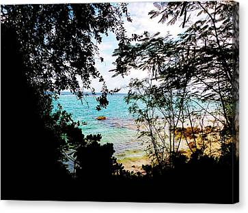 Picturesque Canvas Print by Amar Sheow
