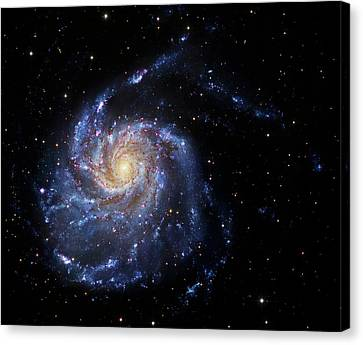 Pinwheel Galaxy Canvas Print by Robert Gendler