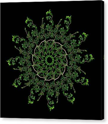Pinwheel I Canvas Print