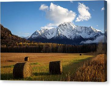 Canvas Print featuring the photograph Pioneer Hay Fields by Tim Newton