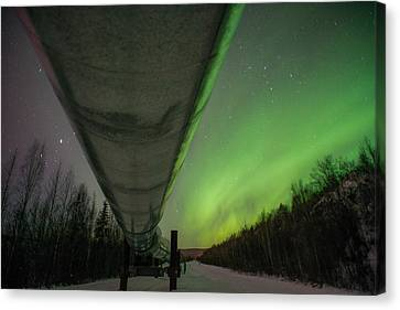 Pipeline And Aurora Canvas Print by Roger Clifford