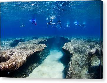 Pipeline's Hungry Reef Canvas Print by Sean Davey