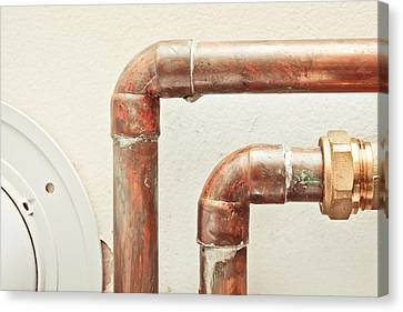 Pipes Canvas Print by Tom Gowanlock