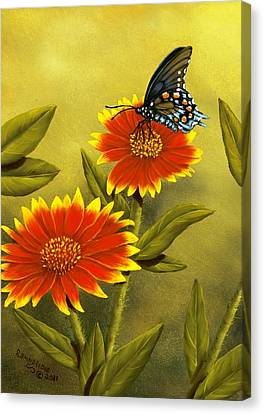 Pipevine Swallowtail And Blanket Flower Canvas Print by Rick Bainbridge