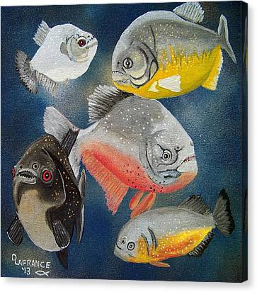 Pirahna  Fish Canvas Print by Debbie LaFrance