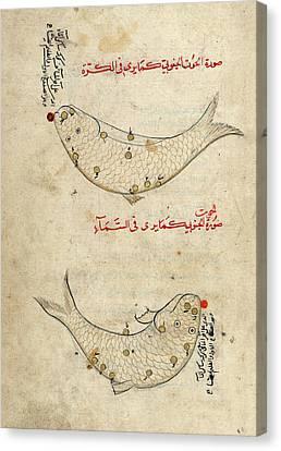 Piscis Austrinus Constellation Canvas Print